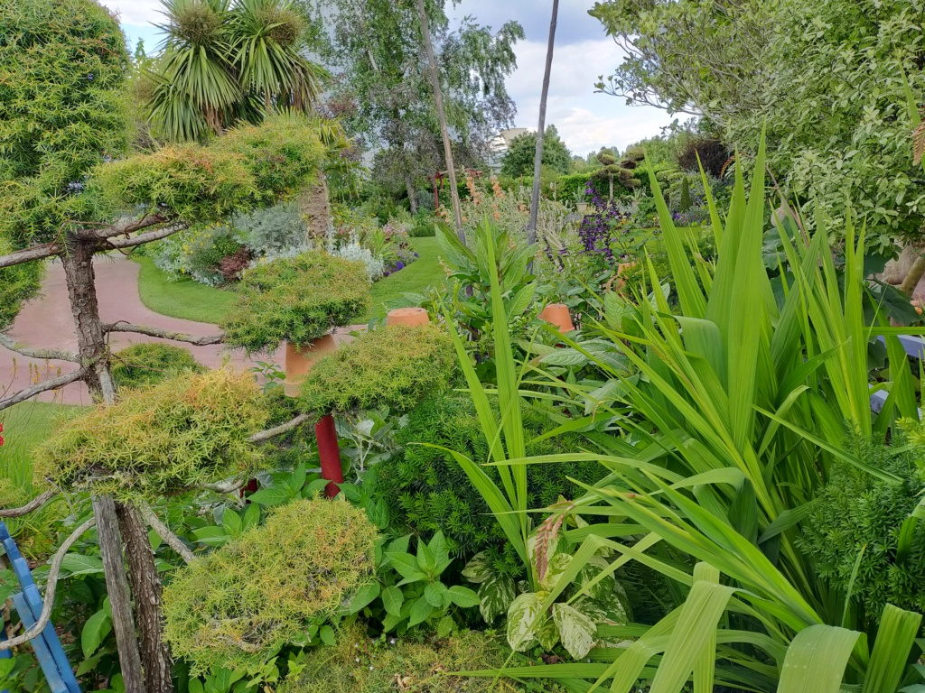 Niwaki, la taille en nuage, l'art topiaire, dans le jardin de Michel Img20294