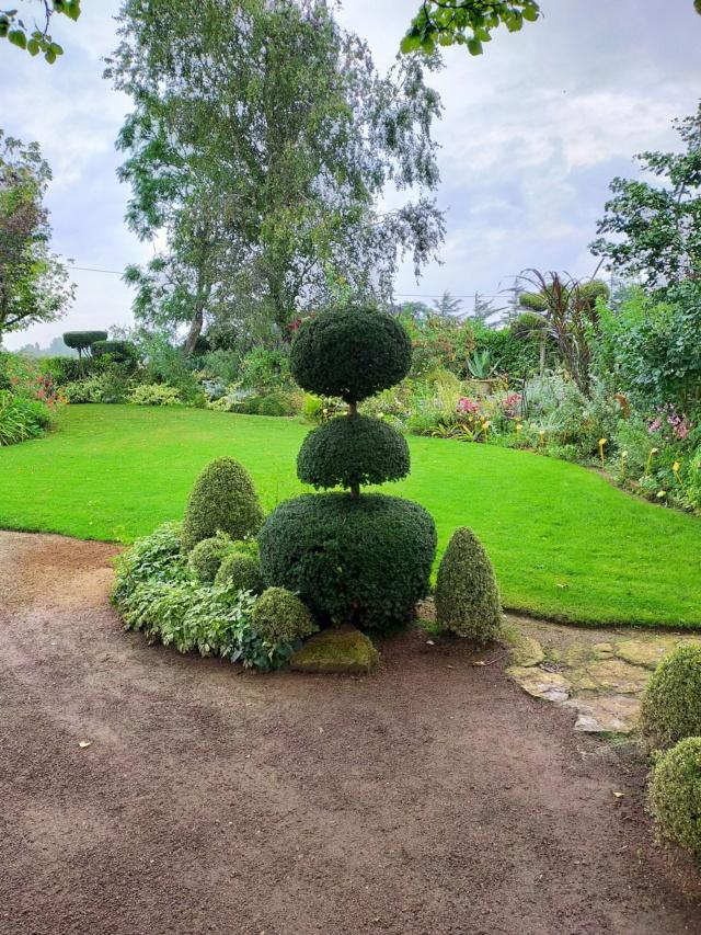 Michou - un jardin de curiosités, botanique - L'oasis de Michel  (44) - Page 10 Img20302