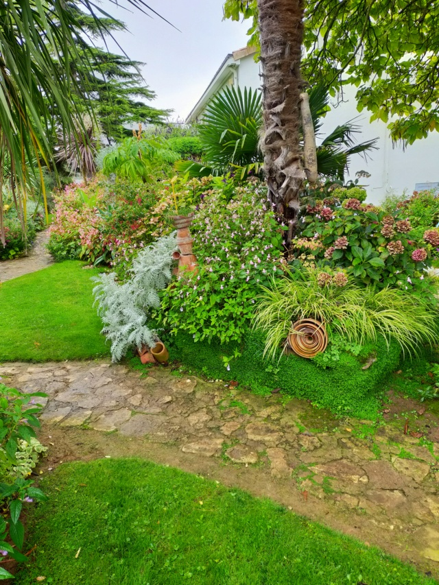 Michou - un jardin de curiosités, botanique - L'oasis de Michel  (44) - Page 10 Img20305