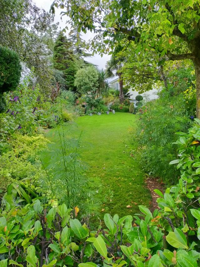 Michou - un jardin de curiosités, botanique - L'oasis de Michel  (44) - Page 10 Img20330