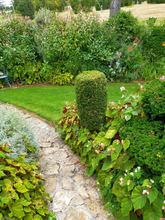 Michou - un jardin de curiosités, botanique - L'oasis de Michel  (44) - Page 10 Img20372