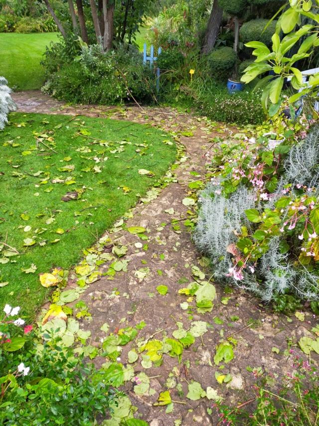 La tempête du 3 octobre, dans le jardin de Michou. Img20389