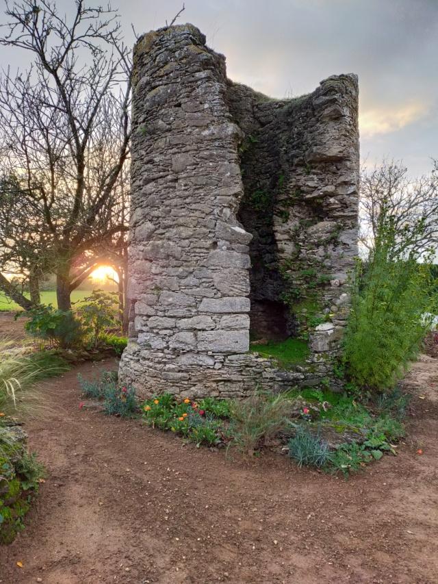 Michou - un jardin de curiosités, botanique, le moulin, l'oasis de Michel  (44) - Page 10 Img20647