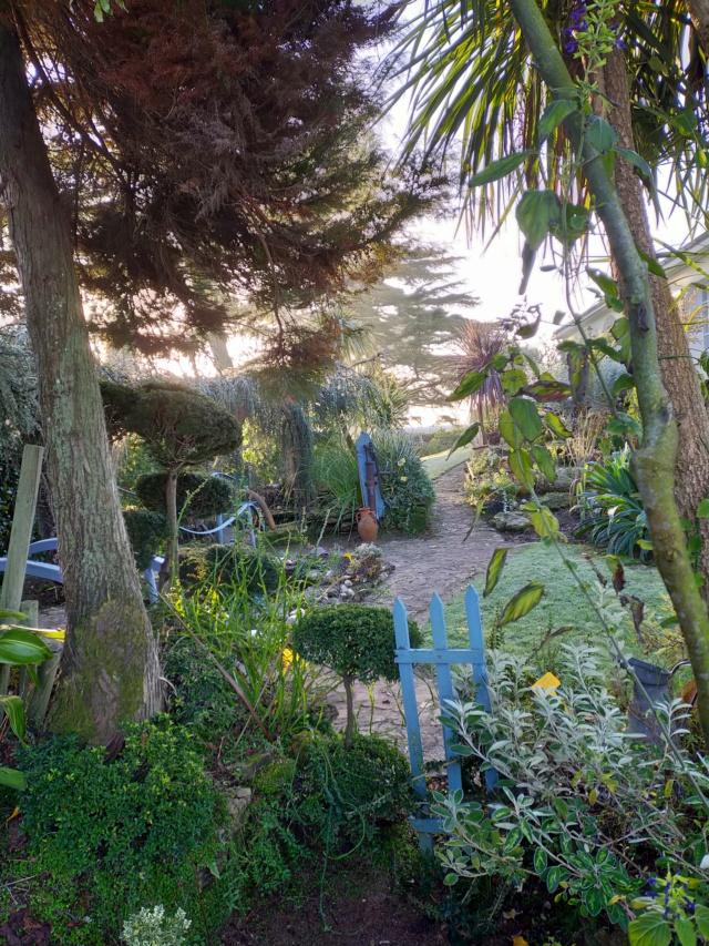 Michou - un jardin de curiosités, botanique, le moulin, l'oasis de Michel  (44) - Page 11 Img20823