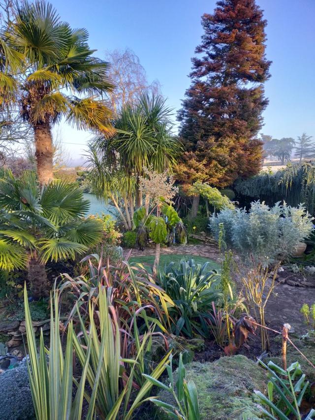 Michou - un jardin de curiosités, botanique, le moulin, l'oasis de Michel  (44) - Page 11 Img20858