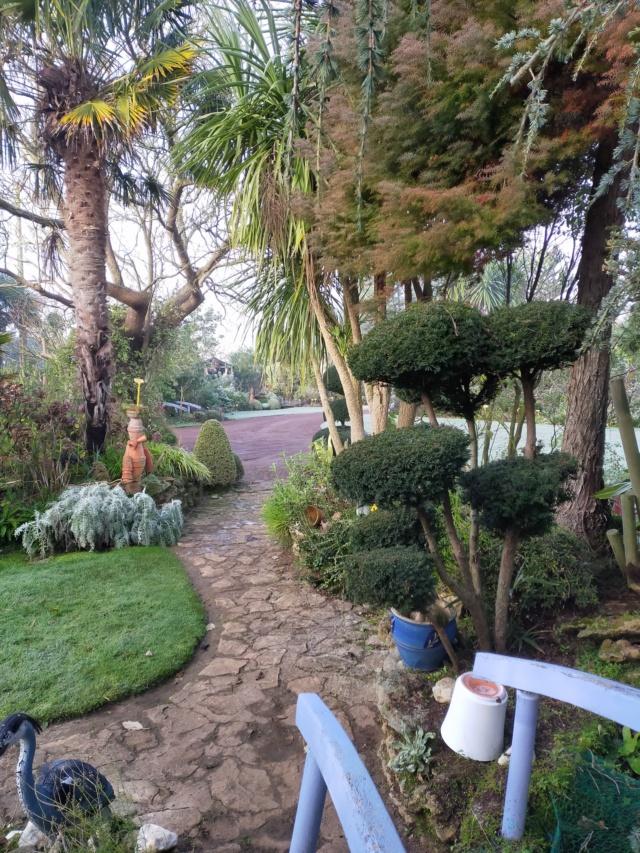 Michou - un jardin de curiosités, botanique, le moulin, l'oasis de Michel  (44) - Page 11 Img20865