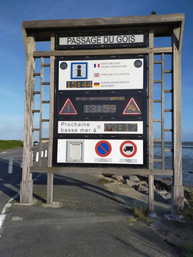 Découvertes et voyages au sud de Nantes et son climat protégé. Michou Img21014