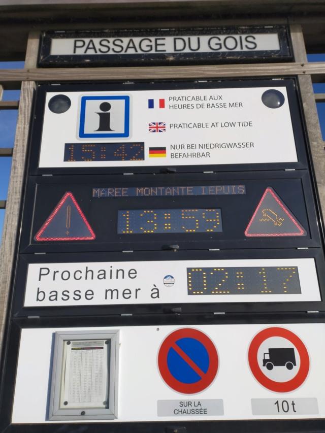 Découvertes et voyages au sud de Nantes et son climat protégé. Michou Img21088