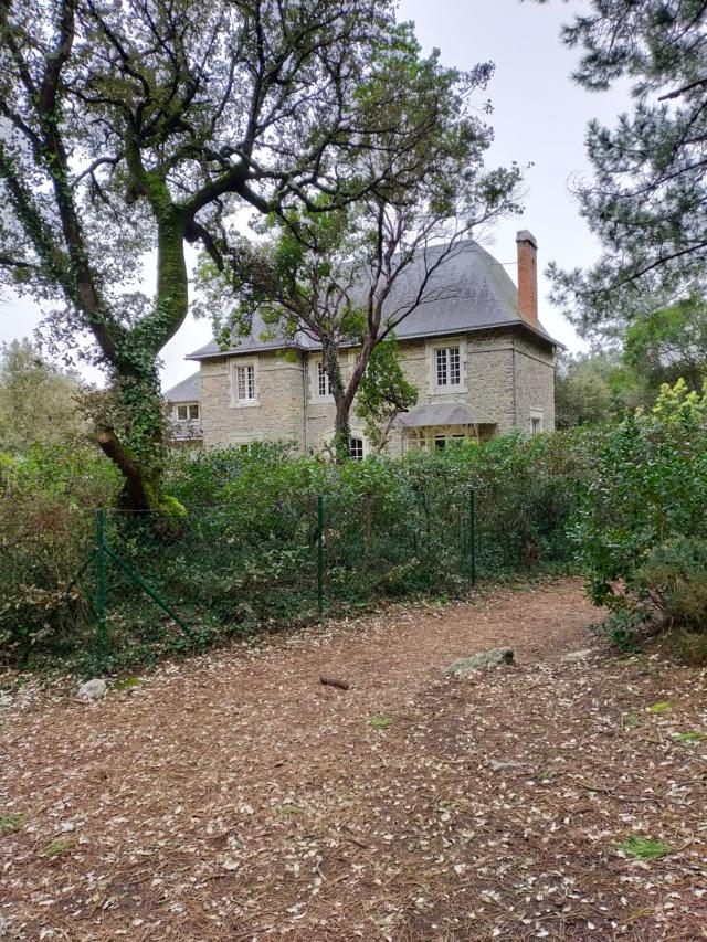 Découvertes et voyages au sud de Nantes et son climat protégé. Michou Img21108