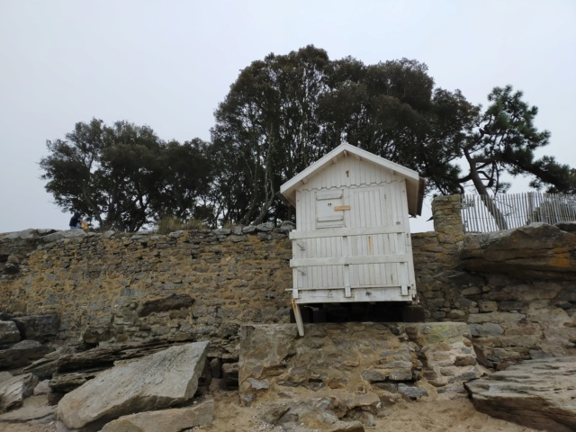 Découvertes et voyages au sud de Nantes et son climat protégé. Michou Img21110