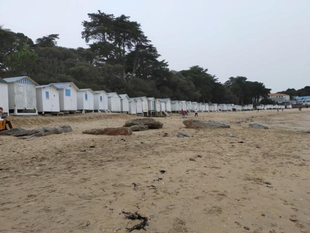 Découvertes et voyages au sud de Nantes et son climat protégé. Michou Img21144