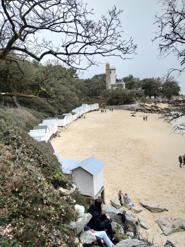 Découvertes et voyages au sud de Nantes et son climat protégé. Michou Img21147