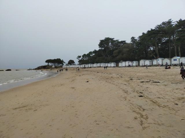 Découvertes et voyages au sud de Nantes et son climat protégé. Michou Img21167