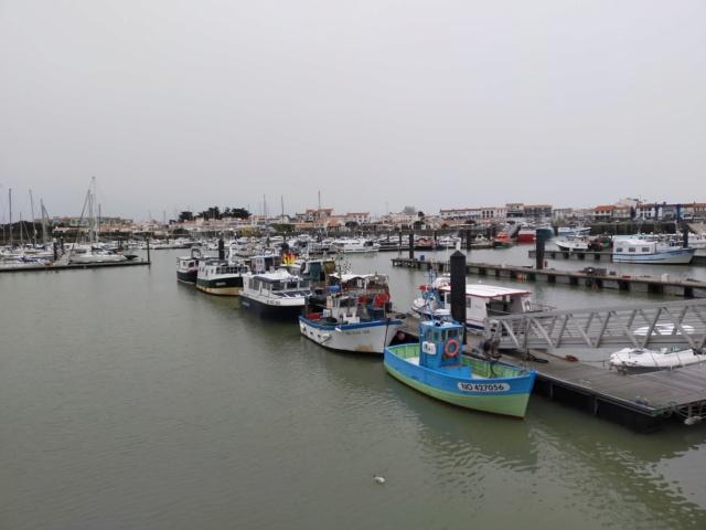 Découvertes et voyages au sud de Nantes et son climat protégé. Michou Img21179