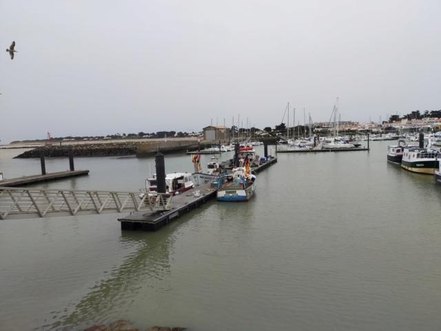 Découvertes et voyages au sud de Nantes et son climat protégé. Michou Img21180