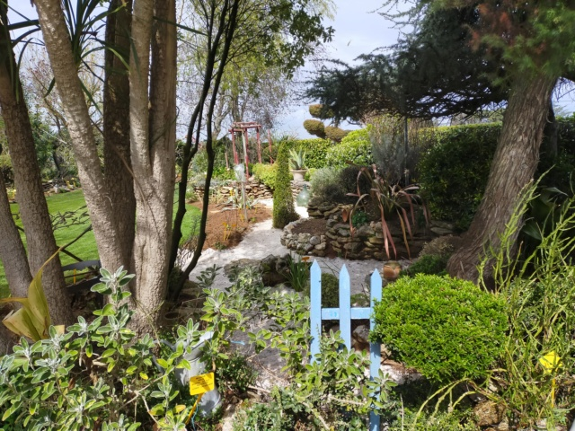 Michou - un jardin de curiosités, botanique, le moulin, l'oasis de Michel  (44) - Page 14 Img21297