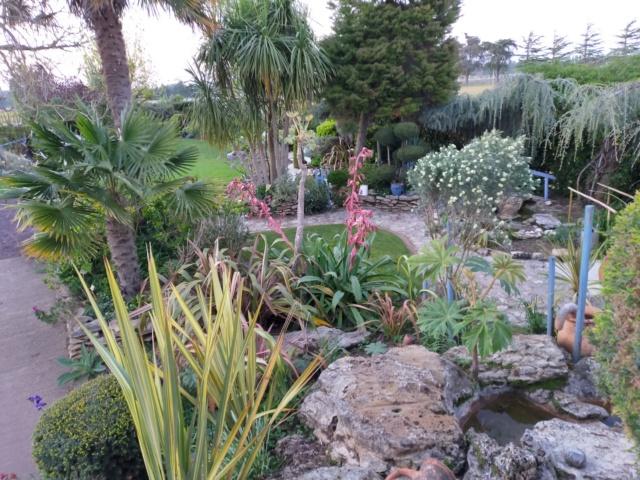 Michou - un jardin de curiosités, botanique, le moulin, l'oasis de Michel  (44) - Page 14 Img21339