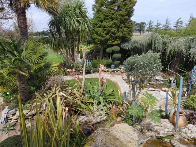 Michou - un jardin de curiosités, botanique, le moulin, l'oasis de Michel  (44) - Page 14 Img21403