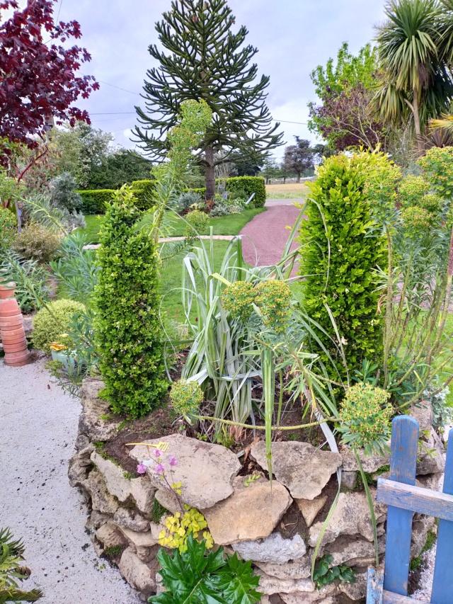 Michou - un jardin de curiosités, botanique, le moulin, l'oasis de Michel  (44) - Page 14 Img21412