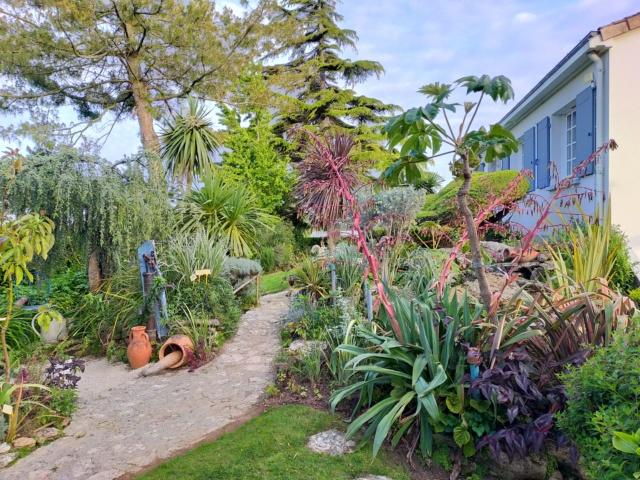 Michou - un jardin de curiosités, botanique, le moulin, l'oasis de Michel  (44) - Page 15 Img21518