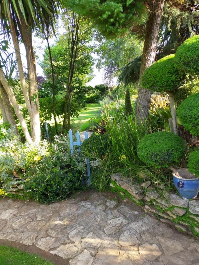 Michou - un jardin de curiosités, botanique, le moulin, l'oasis de Michel  (44) - Page 16 Img21719