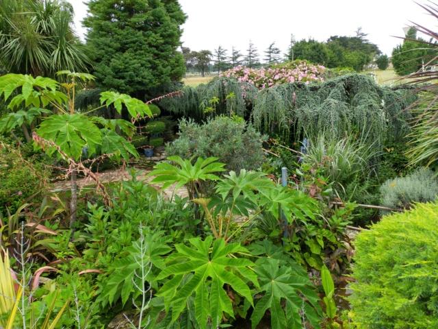 Michou - un jardin de curiosités, botanique, le moulin, l'oasis de Michel  (44) - Page 16 Img21721