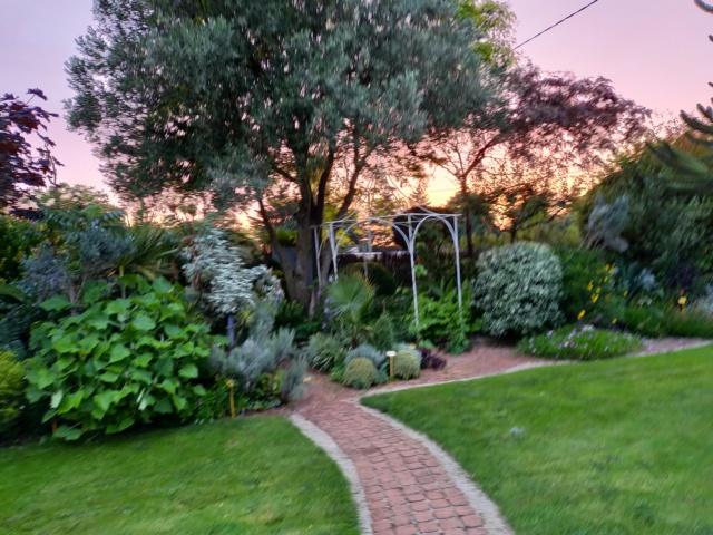 Michou - un jardin de curiosités, botanique, le moulin, l'oasis de Michel  (44) - Page 16 Img21722