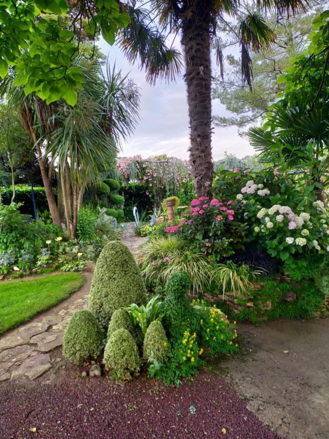 Michou - un jardin de curiosités, botanique, le moulin, l'oasis de Michel  (44) - Page 16 Img21741