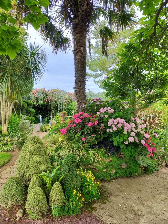 Michou - un jardin de curiosités, botanique, le moulin, l'oasis de Michel  (44) - Page 16 Img21770