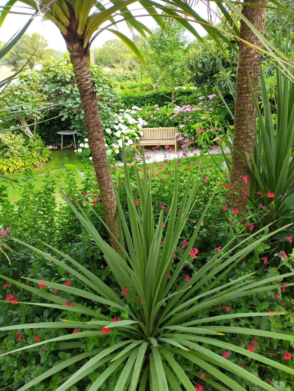 Michou - un jardin de curiosités, botanique, le moulin, l'oasis de Michel  (44) - Page 16 Img21773