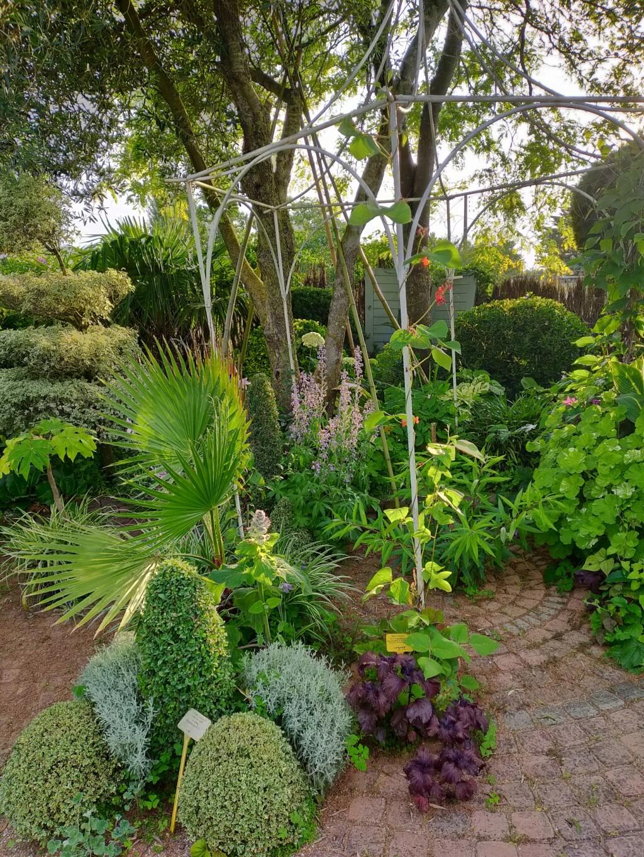 Michou - un jardin de curiosités, botanique, le moulin, l'oasis de Michel  (44) - Page 16 Img21799