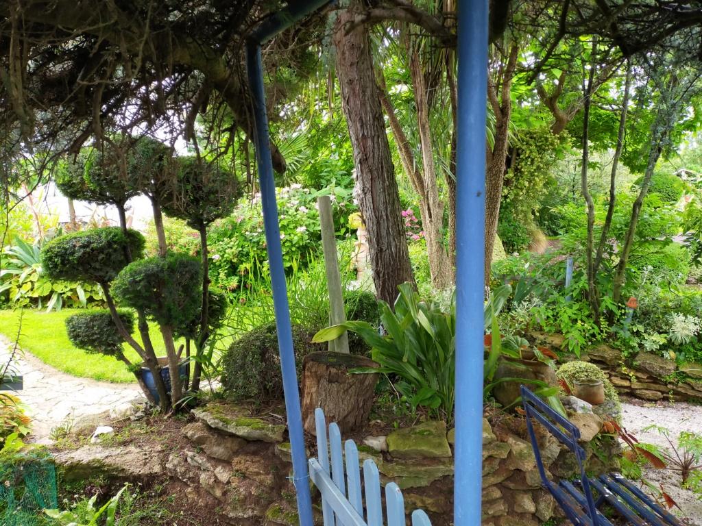 Michou - un jardin de curiosités, botanique, le moulin, l'oasis de Michel  (44) - Page 16 Img21803