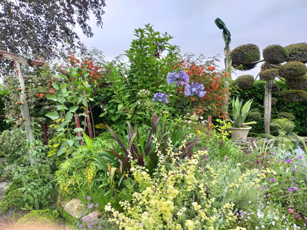 Michou - un jardin de curiosités, botanique, le moulin, l'oasis de Michel  (44) - Page 16 Img21815