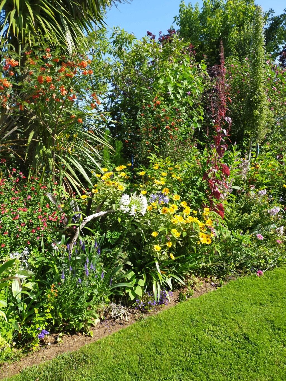 Michou - un jardin de curiosités, botanique, le moulin, l'oasis de Michel  (44) - Page 16 Img21834