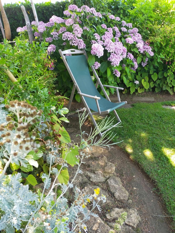Michou - un jardin de curiosités, botanique, le moulin, l'oasis de Michel  (44) - Page 16 Img21870