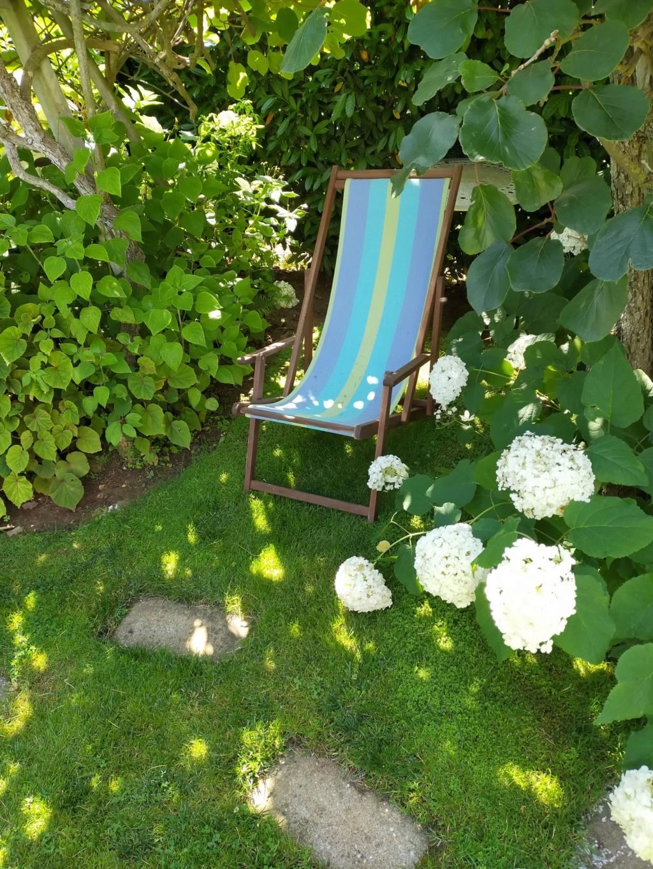 Michou - un jardin de curiosités, botanique, le moulin, l'oasis de Michel  (44) - Page 16 Img21871
