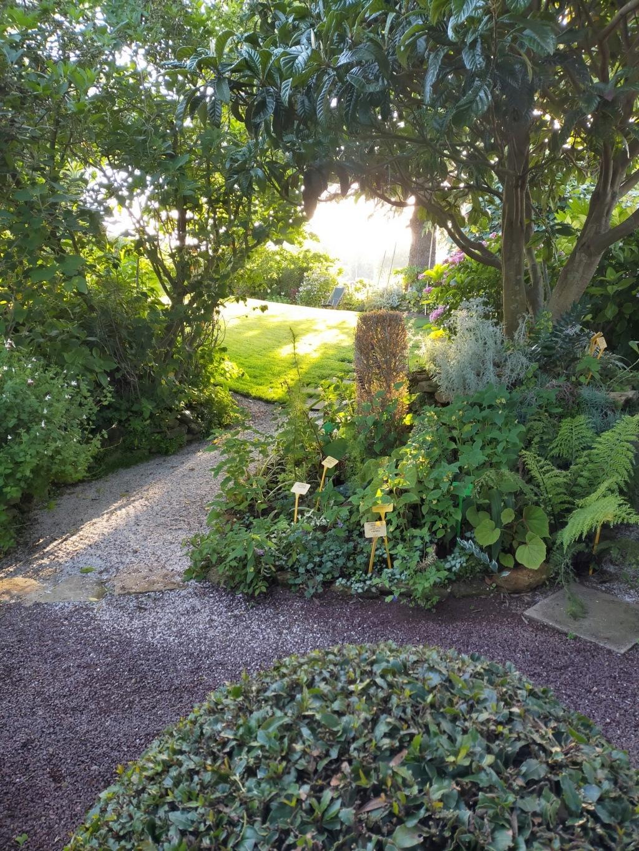 Michou - un jardin de curiosités, botanique, le moulin, l'oasis de Michel  (44) - Page 16 Img21875