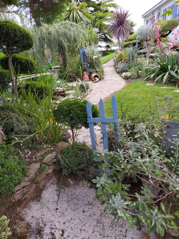 Michou - un jardin de curiosités, botanique, le moulin, l'oasis de Michel  (44) - Page 16 Img21918