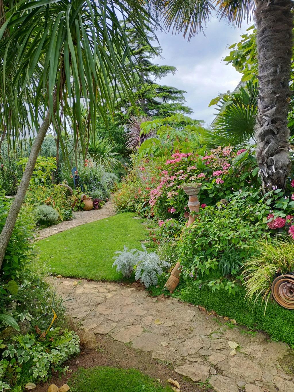 Michou - un jardin de curiosités, botanique, le moulin, l'oasis de Michel  (44) - Page 18 Img22084