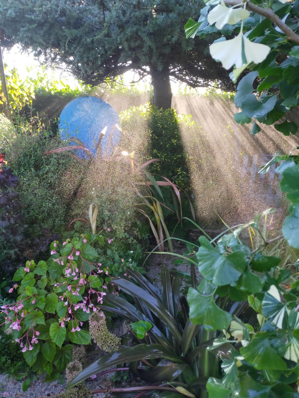 Michou - un jardin de curiosités, botanique, le moulin, l'oasis de Michel  (44) - Page 18 Img22136
