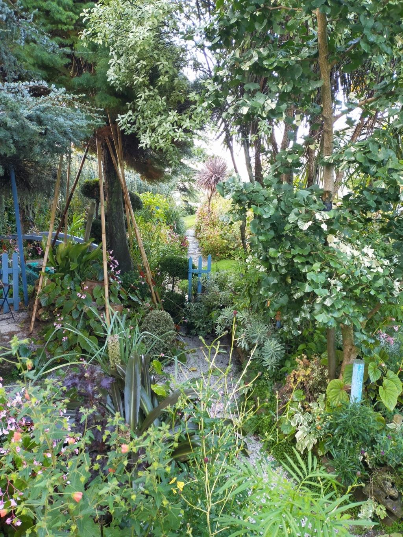 Michou - un jardin de curiosités et de rêves, voici l'oasis botanique de Marie-Jo et de Michel  (44) - Page 19 Img22164