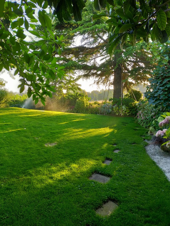 Michou - un jardin de curiosités et de rêves, voici l'oasis botanique de Marie-Jo et de Michel  (44) - Page 19 Img22168