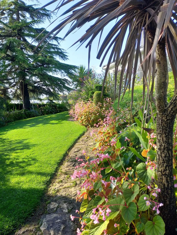 Michou - un jardin de curiosités et de rêves, voici l'oasis botanique de Marie-Jo et de Michel  (44) - Page 19 Img22169