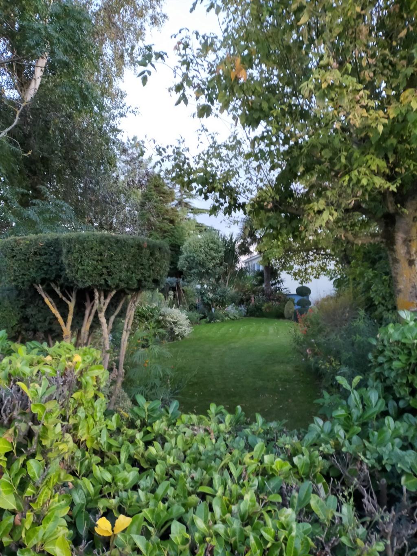Michou - un jardin de curiosités et de rêves, voici l'oasis botanique de Marie-Jo et de Michel  (44) - Page 19 Img22200