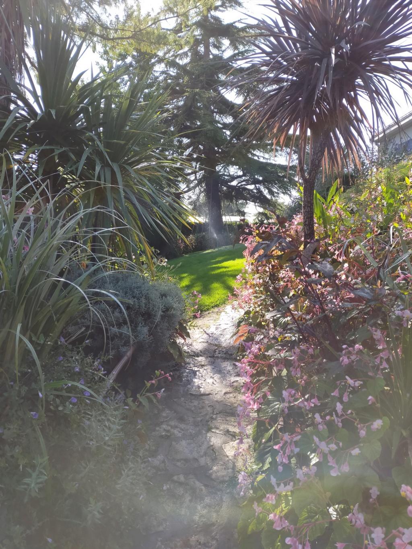 Michou - un jardin de curiosités et de rêves, voici l'oasis botanique de Marie-Jo et de Michel  (44) - Page 19 Img22215
