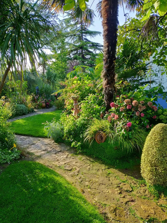 Michou - un jardin de curiosités et de rêves, voici l'oasis botanique de Marie-Jo et de Michel  (44) - Page 19 Img22276