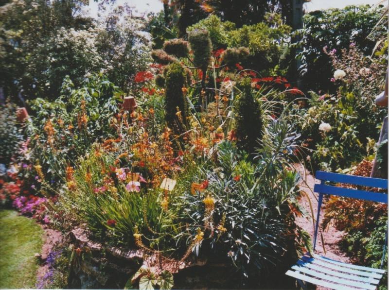 chaleureuses floraisons - Page 2 Numzo174
