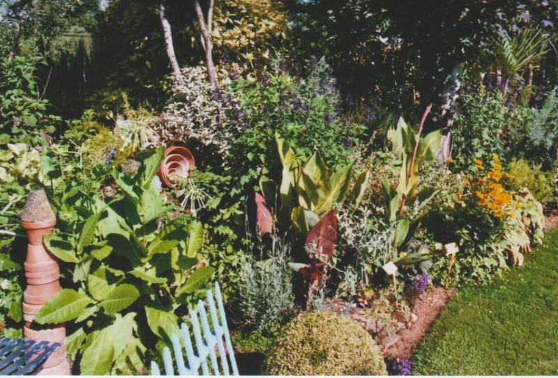 chaleureuses floraisons - Page 2 Numzo179