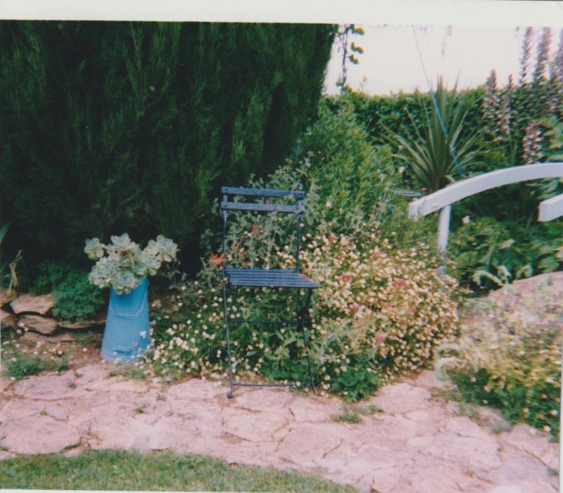 Michou - un jardin de curiosités, botanique - L'oasis de Michel  (44) - Page 5 Numzo228