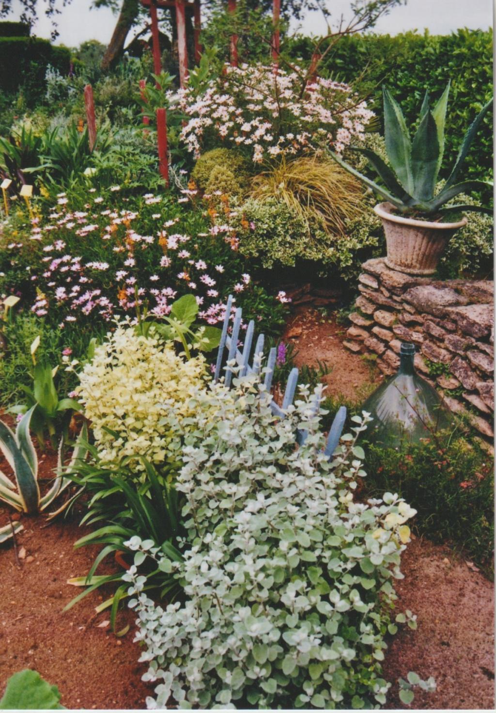 Michou - un jardin de curiosités, botanique - L'oasis de Michel  (44) - Page 6 Numzo344